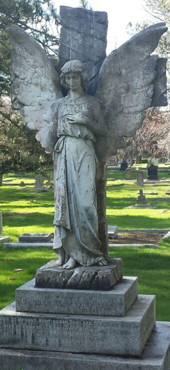 ross bay blue angel