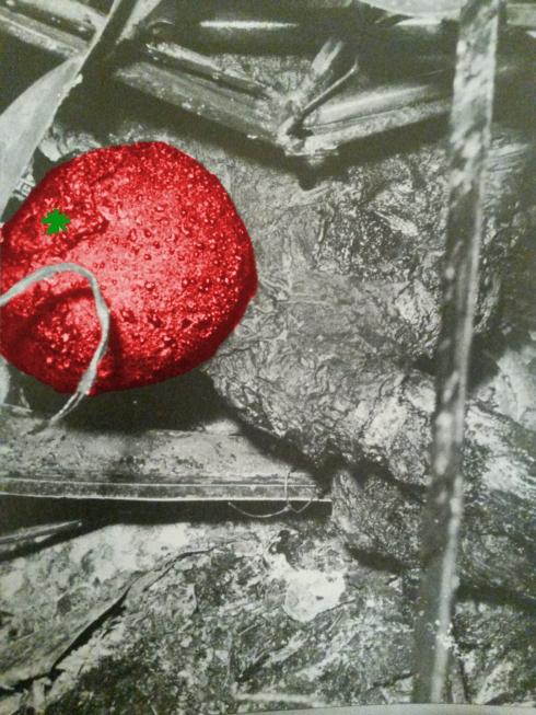 tomatoman