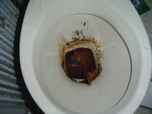 shitty toilet