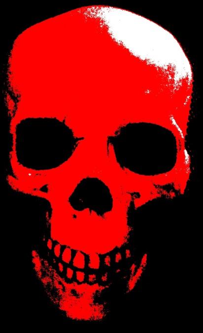 skull falxifer